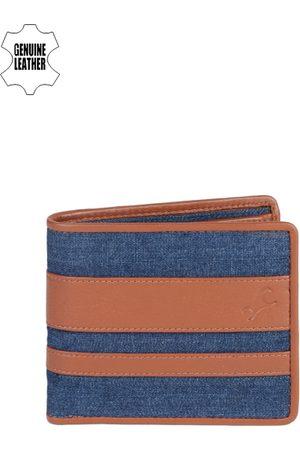 Fastrack Men Blue & Tan Striped Two Fold Wallet
