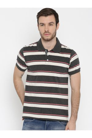adidas Men Charcoal Grey & Off-White Striped Polo T-shirt