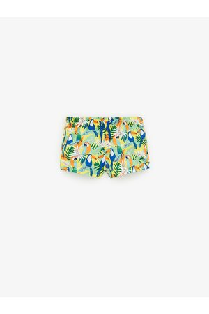 Zara Bird print bermuda swim shorts