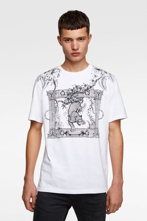 Zara T-shirt with combined embroidery