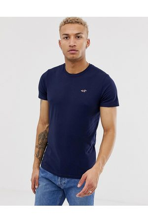 Hollister Crew neck seagull logo t-shirt in