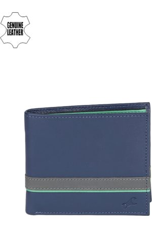 Fastrack Men Blue Solid Two Fold Wallet
