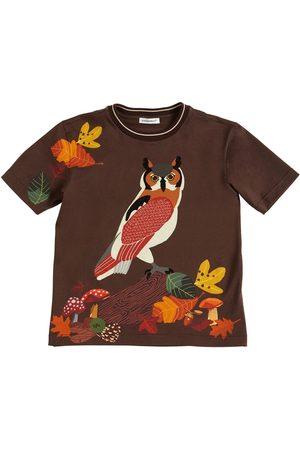 Dolce & Gabbana Owl Print Cotton Jersey T-shirt