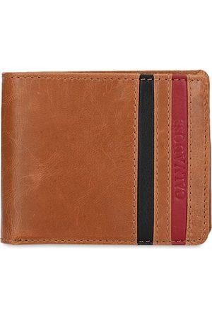 Calvadoss Men Tan Striped Two Fold Wallet