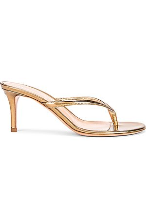 Gianvito Rossi Thong Sandals in Mekong