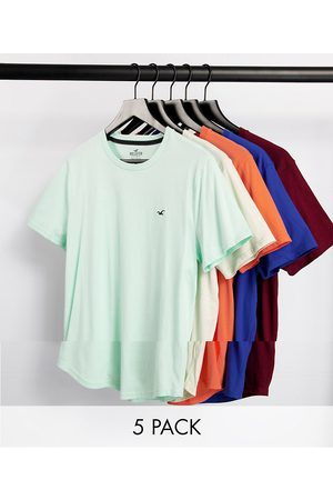 Hollister 5 pack curved hem icon logo t-shirt in blue/mint/pink/burgundy/grey