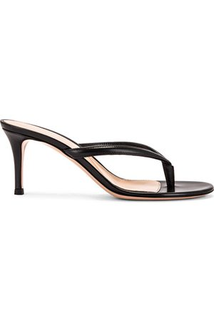 Gianvito Rossi Thong Sandals in
