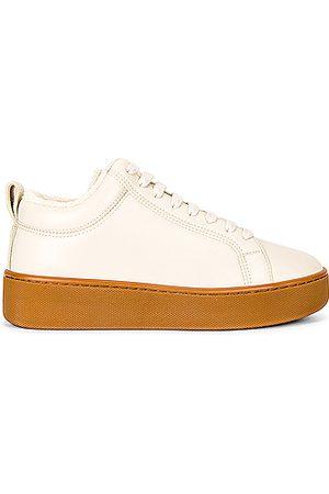 Bottega Veneta Lace Up Sneakers in Sea Salt