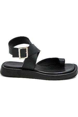 GIA/RHW Flat Toe Ring Wrap Sandal in