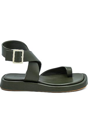 GIA/RHW Flat Toe Ring Wrap Sandal in Moss