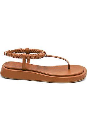 GIA/RHW Flat Thong Sandal in Rustic