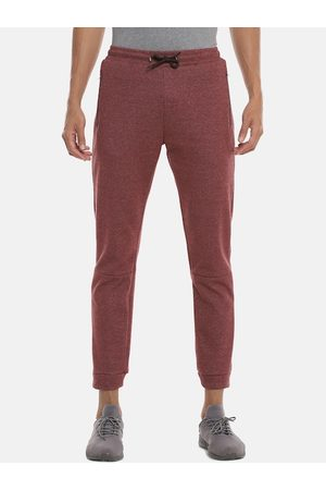 Campus Men Maroon Solid Straight-Fit Joggers