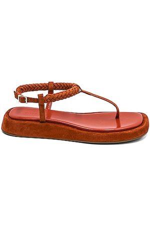 GIA/RHW Flat Thong Suede Sandal in Burnt