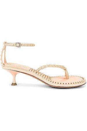 Bottega Veneta Dot Ankle Strap Sandals in Macaroon