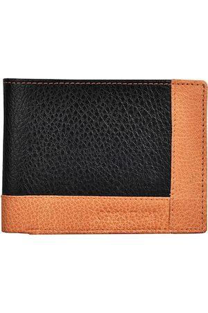 Creature Men Black & Orange Colourblocked Textured PU Two Fold Wallet