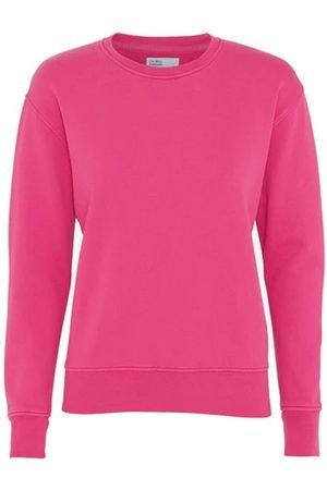 Colorful Standard Classic Crew Organic Cotton Sweatshirt - Bubblegum