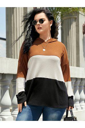 YOINS Plus Size Color Block Waffle Knit Hooded Design Long Sleeves Knitwear